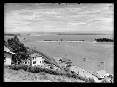 Harbour View, Nelson 1947