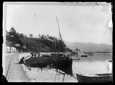Port Road from Lukin's Wharf, Nelson