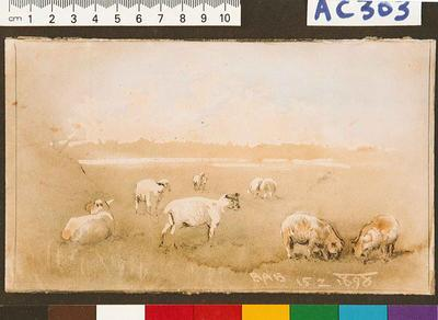[Rural scene with sheep]