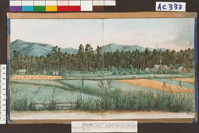 Dr Greenwood's house in Motueka on right, 1852
