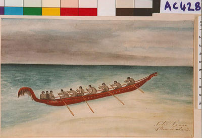 Native canoe of New Zealand