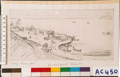 Auckland Point in 1843