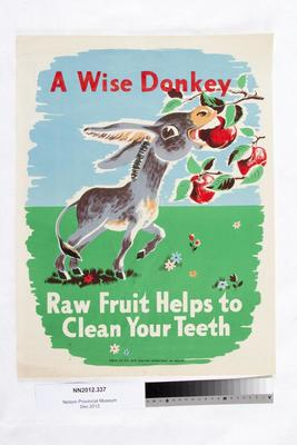 A wise donkey : raw fruit helps to clean your teeth; Circa 1950s;