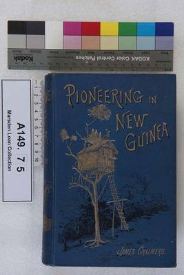 Pioneering in New Guinea