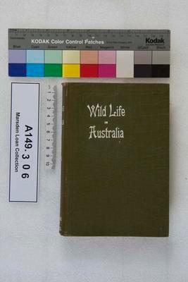 Wild life in Australia / by  W.H.Dudley Le Souef; Circa 1907; A149.306