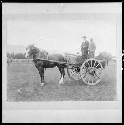 Rutherford, James & Ernest, at Richmond Showgrounds