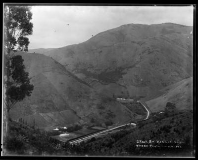 Brook St Valley, Nelson.
