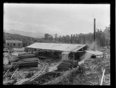 Prouse & Saunders Sawmill, Collingwood