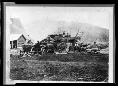 Harvest scene with traction engine