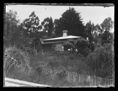 Unidentified house and garden