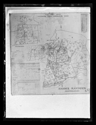 Hanmer Plantation Map, New Zealand Forest Service. Canterbury Forest Conservation Region