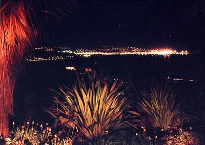 Nelson city and port at night