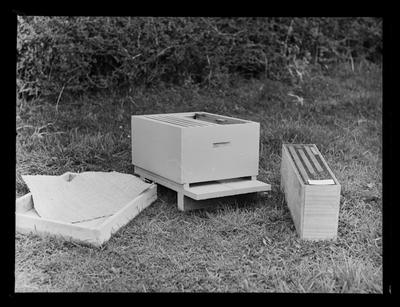 Dept of Agriculture, bee culture