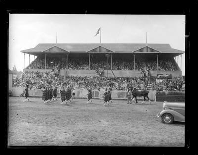 Nelson A & P Show, large group, 1936