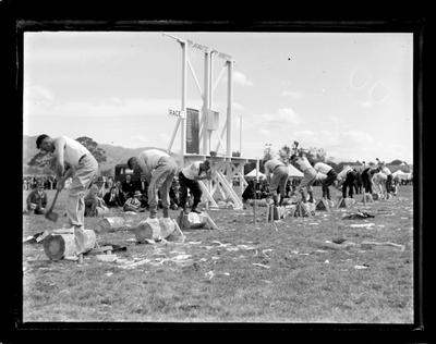 Nelson A&P Show, large crowd, 1937