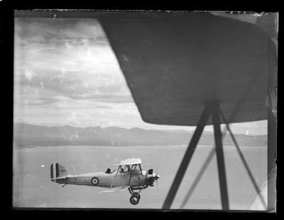 Nelson Aero Club, plane in flight