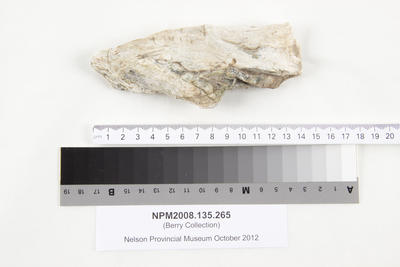 Specimen, geological