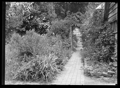 "Barnicoat - ""Ashfield"", Garden Path"