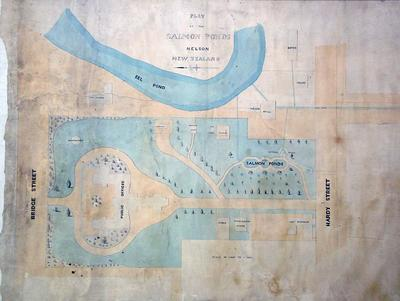 Plan of the Salmon Ponds, Nelson, New Zealand