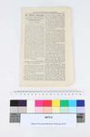 Nelson Evening Mail supplement : our monthly supplement, Saturday, December 8, 1877