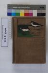 The birds of Siberia : a record of a naturalist's visits to the valleys of the Petchora and Yenesei