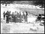 2nd Contingent Camp. Newtown Park. Wellington. Jan. 1900. Mixing Horse Feed.